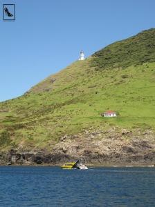 Cape Brett (Cabo Brett)